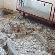 paleolitico venosa hotel alloggi bed e breakfast al castello